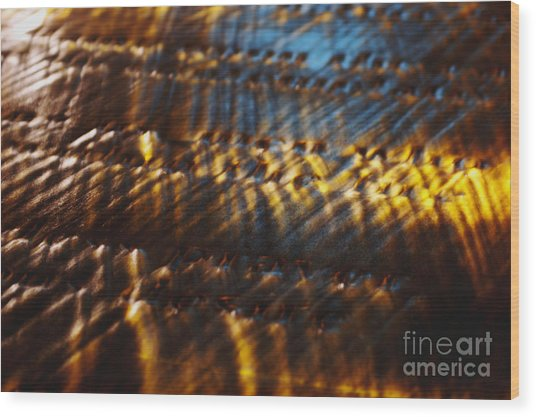 Reflection Wood Print by Hideaki Sakurai