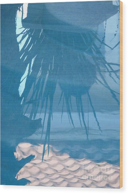 Reflection In Blue Wood Print by Donna McLarty