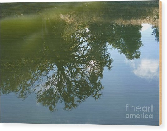 Reflection Wood Print by JoAnn SkyWatcher
