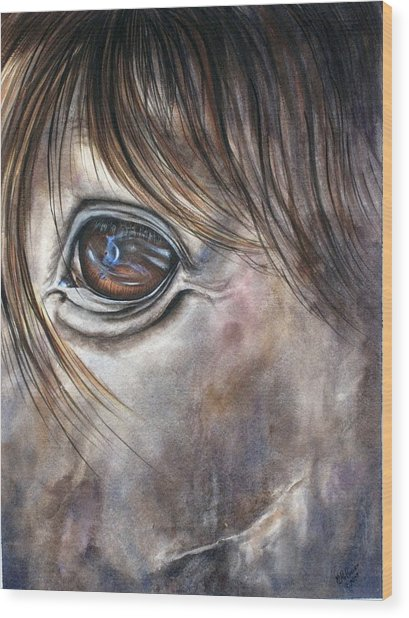Reflection Of A Painted Pony Wood Print