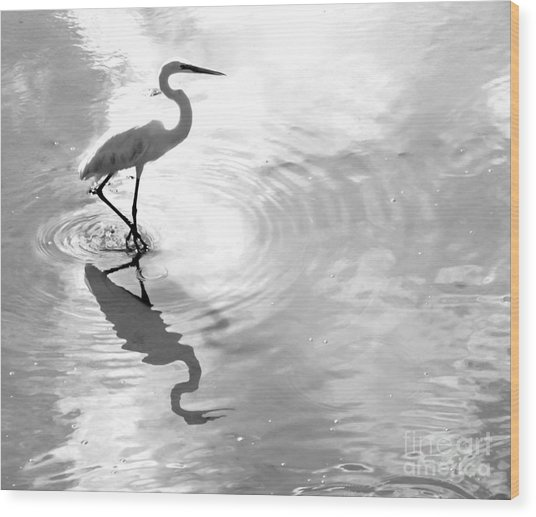 Reflections And Ripples Wood Print
