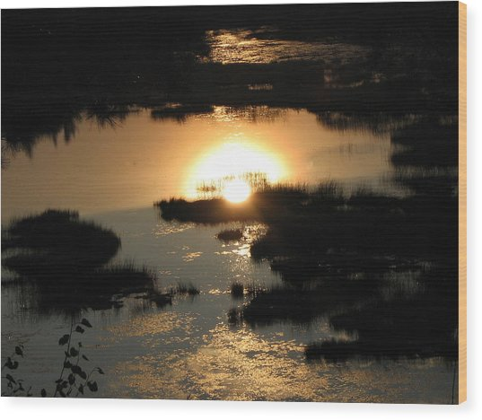 Reflections At Sunset Wood Print