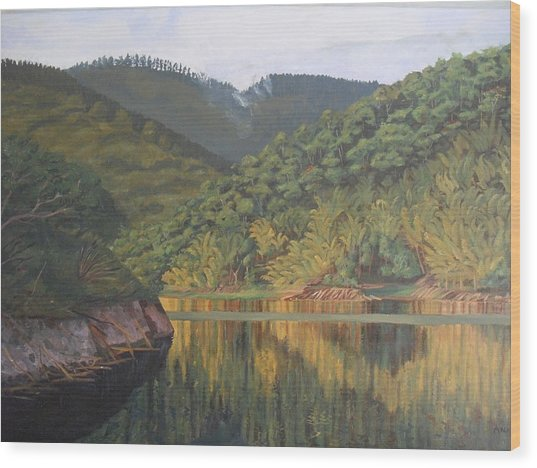 Reflections At The Dam Wood Print by Anji Worton