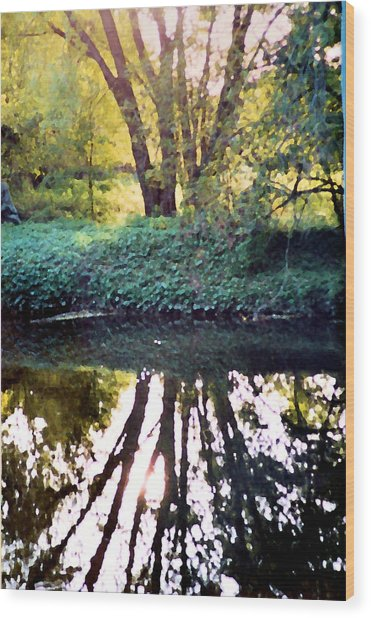 Reflections At Wyeth Wood Print by Ellen Lerner ODonnell