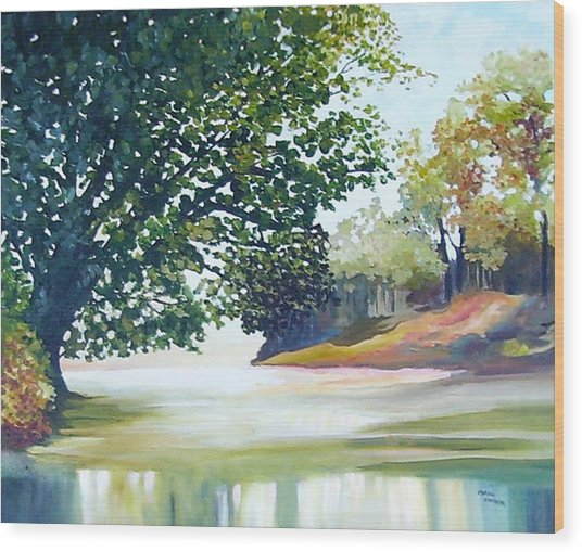 Reflections Wood Print by Carola Ann-Margret Forsberg