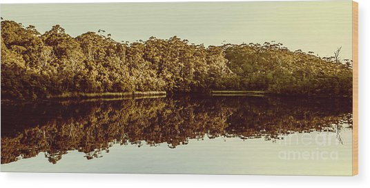 Reflections From Cockle Creek  Wood Print