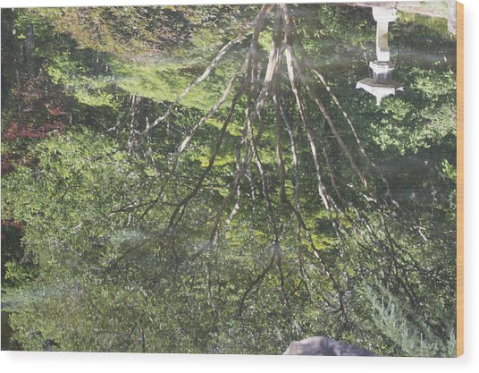 Reflections In The Japanese Gardens Wood Print