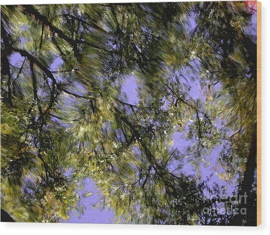 Reflections Wood Print by Marc Bittan