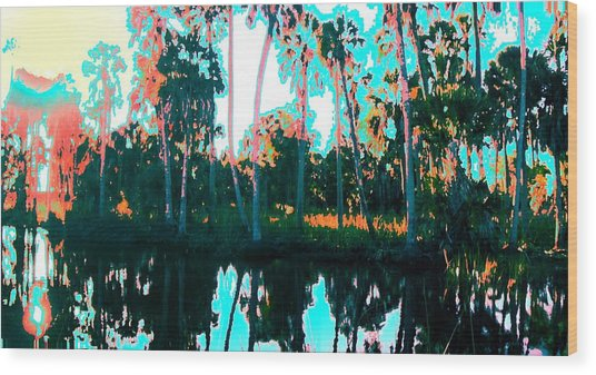 Reflections Of Palms Gulf Coast Florida Wood Print