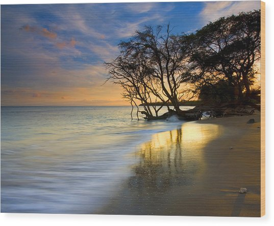Reflections Of Paradise Wood Print