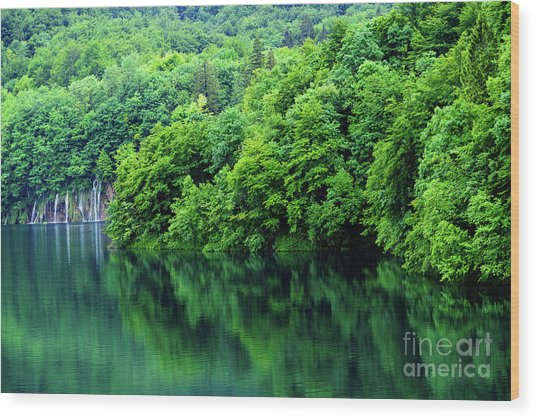Reflections Of Plitvice, Plitvice Lakes National Park, Croatia Wood Print