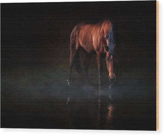 Reflections Of Wilma Wood Print