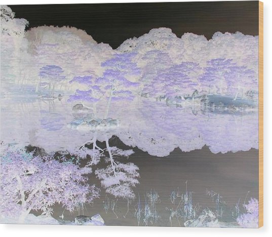 Reflections On A Surreal Pond Wood Print by Curtis Schauer
