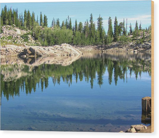 Reflections On Lake Mary Wood Print