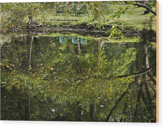 Reflections On Sitting Wood Print