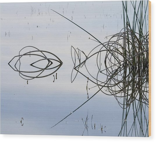 Reflections One Wood Print by Charlie Osborn