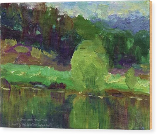 Reflections Painting Study By Svetlana Wood Print