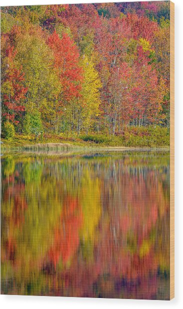 Canaan Valley West Virginia Reflections Wood Print