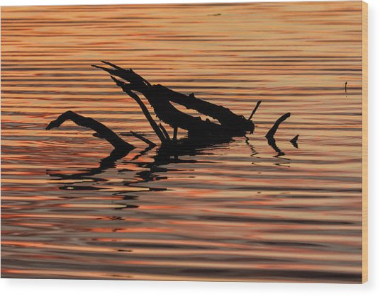 Reflective Abstract Wood Print