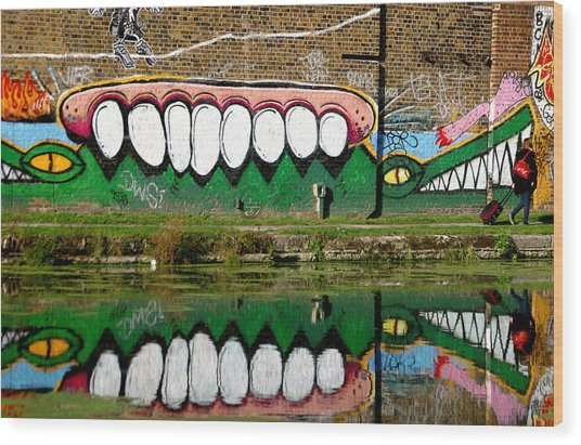 Reflective Canal 13 Wood Print by Jez C Self