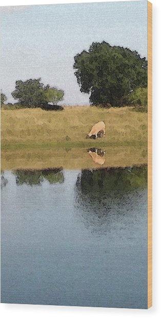 Reflective Cow Wood Print