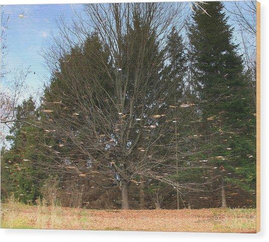 Reflective Landscape Wood Print by Larry Federman