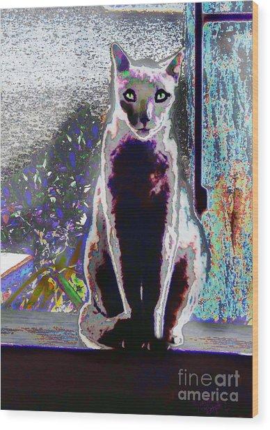 Regal Puss Wood Print