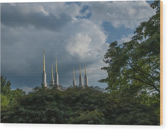 Regal Spires Wood Print