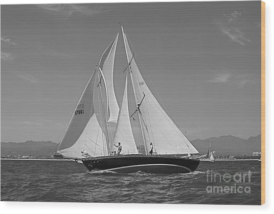 Regatta 09 Puerto Vallarta Mexico Wood Print