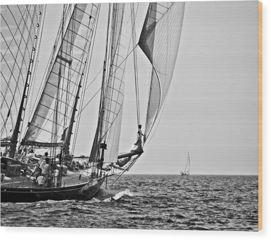 Regatta Heroes In A Calm Mediterranean Sea In Black And White Wood Print