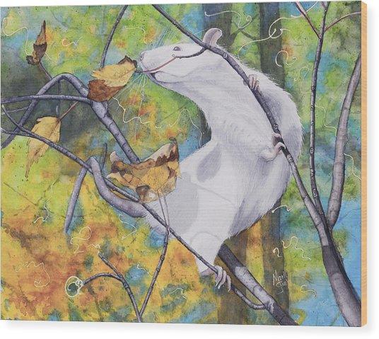 Tree Tango Wood Print