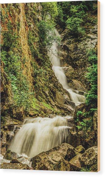 Reid Falls Wood Print
