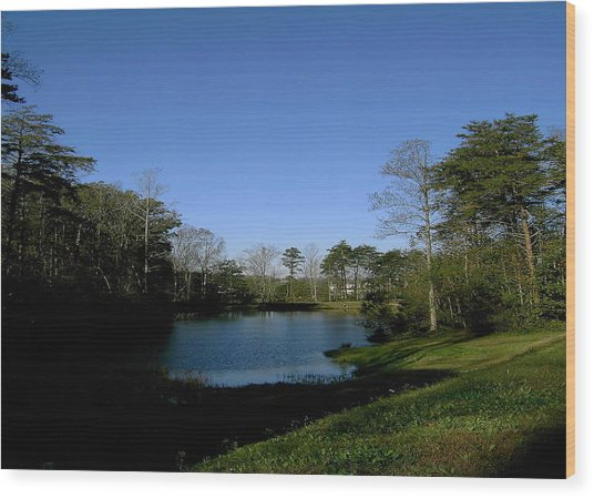 Relaxing By The Pond Wood Print by Patrick Murphy