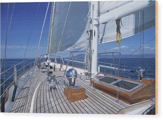Relaxing On Deck Wood Print