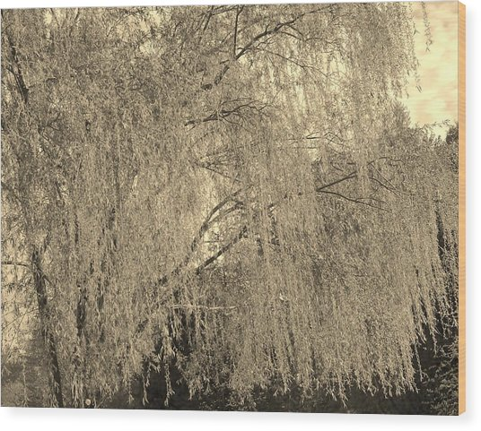 Remember Our Willow Wood Print