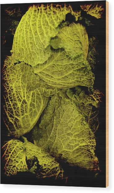Renaissance Chinese Cabbage Wood Print