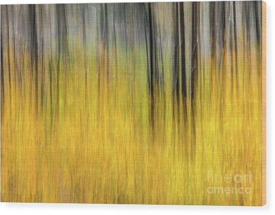 Renewal Abstract Art By Kaylyn Franks Wood Print