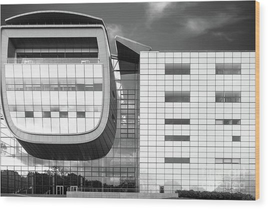 Rensselaer Polytechnic Institute Empac Wood Print by University Icons