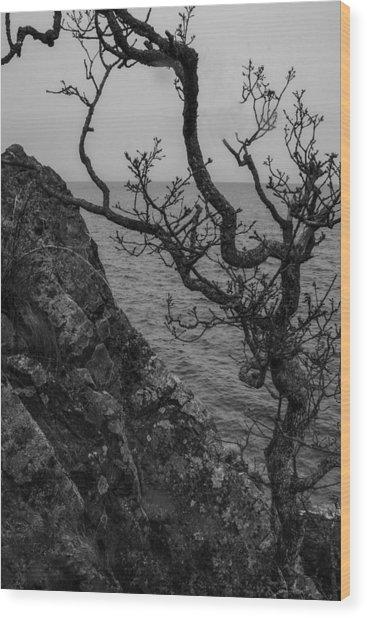 Resilience Wood Print
