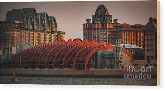 Wood Print featuring the photograph Resort World Sentosa by Ray Shiu