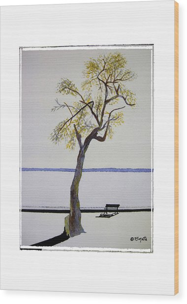 Resting Place Wood Print by Robert Boyette
