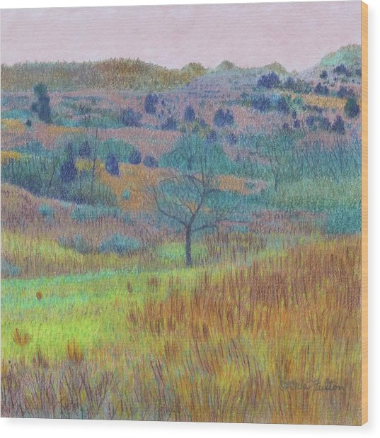 Return Of Green Dream Wood Print