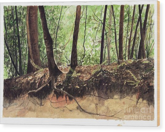 Returning To Your Roots Wood Print by Carla Dabney