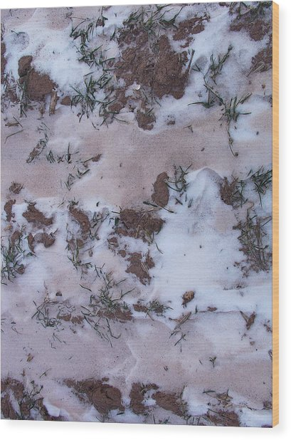 Reversing The Roles - Soil Dusting A Crispy Snow Wood Print