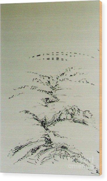 Rfb0209-2 Wood Print