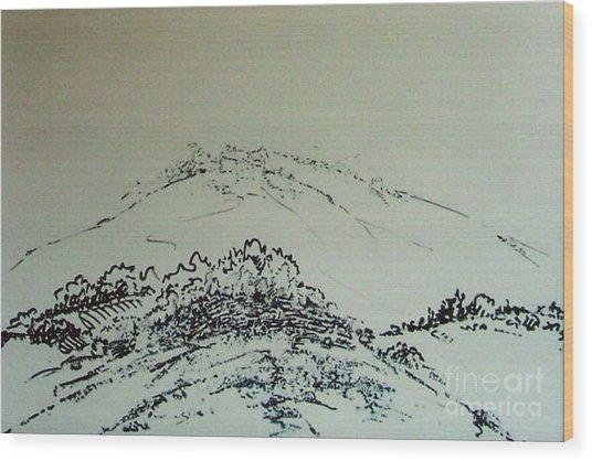 Rfb0211-2 Wood Print