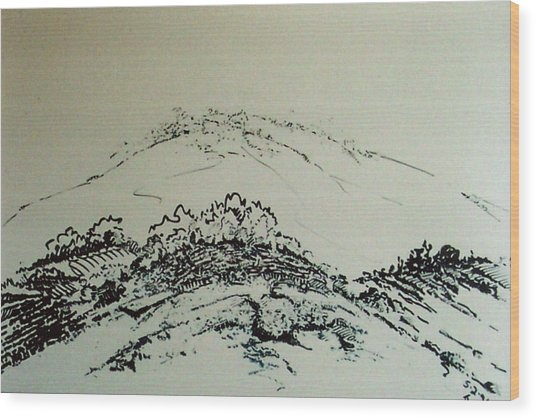 Rfb0211 Wood Print