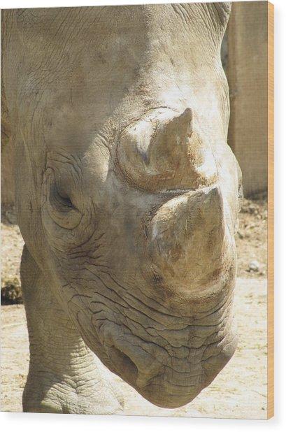 Rhino Closeup Wood Print by George Jones