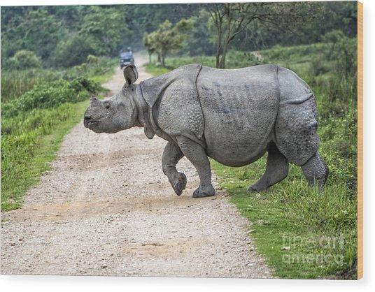 Rhino Crossing Wood Print