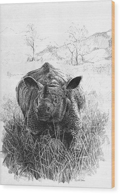 Rhino Wood Print by Paul Illian